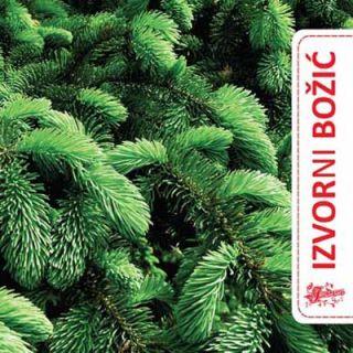 Izvorni Božić (CD)
